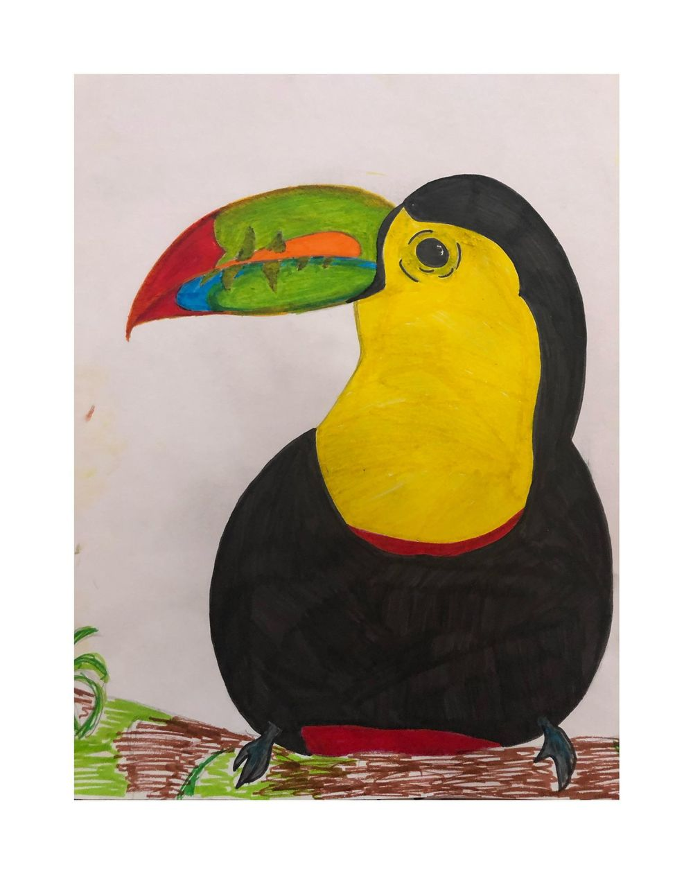 Toucan in Shapes - image 1 - student project