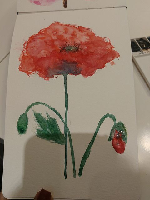Poppies - image 2 - student project