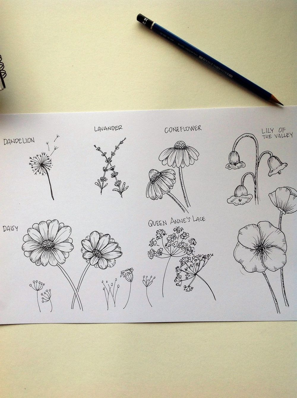 inked Wild Flowers - image 1 - student project