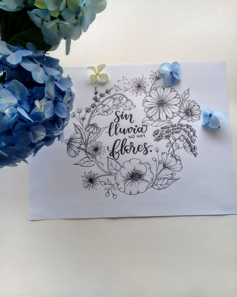 inked Wild Flowers - image 3 - student project
