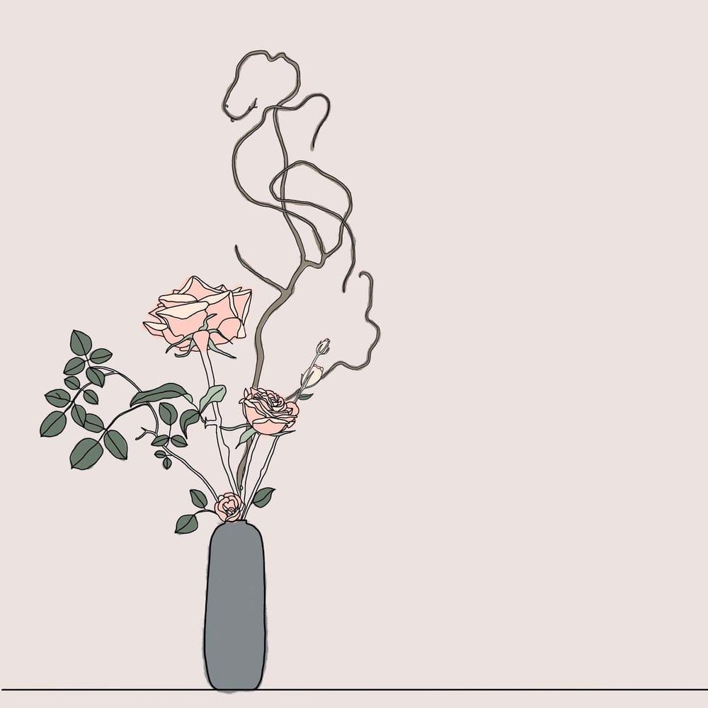 Botanical Illustrations - image 3 - student project