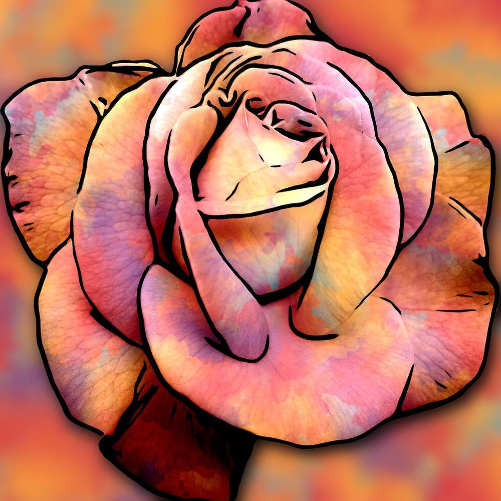 Musina Rose - image 1 - student project