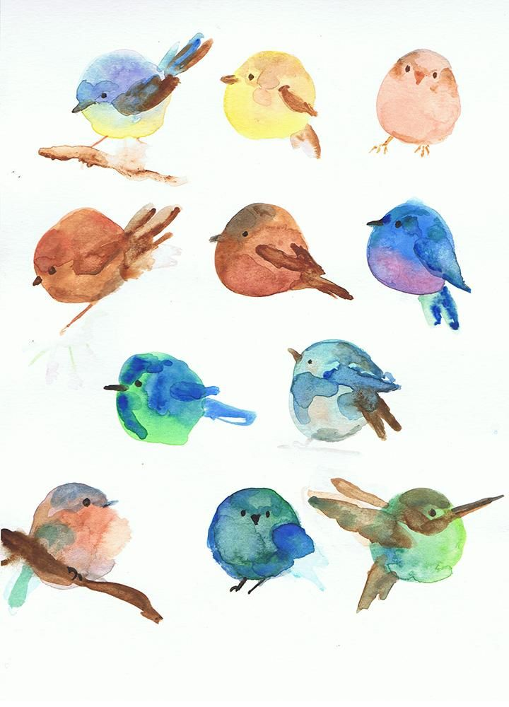 chubby little circle birds - image 1 - student project