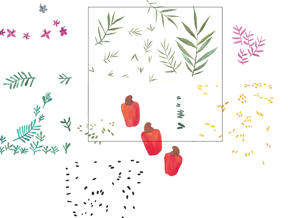 Cashew fruit pattern - image 2 - student project