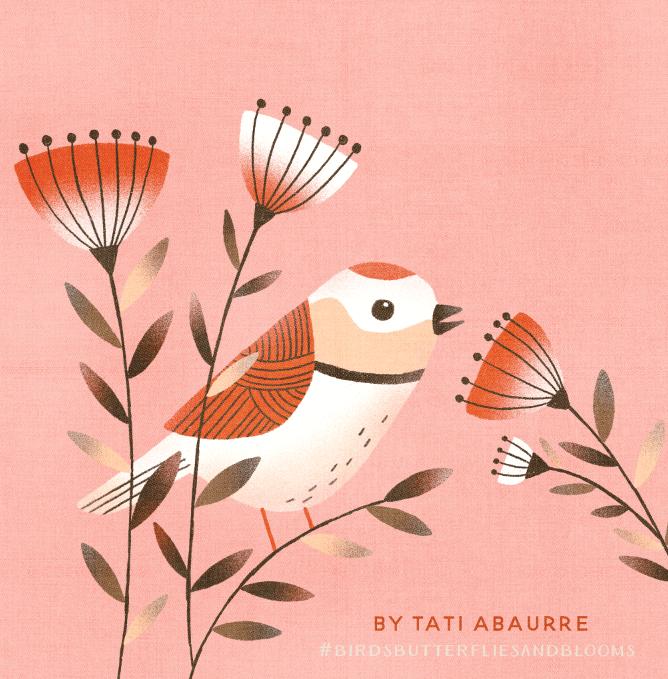 Procreate birdie - image 1 - student project
