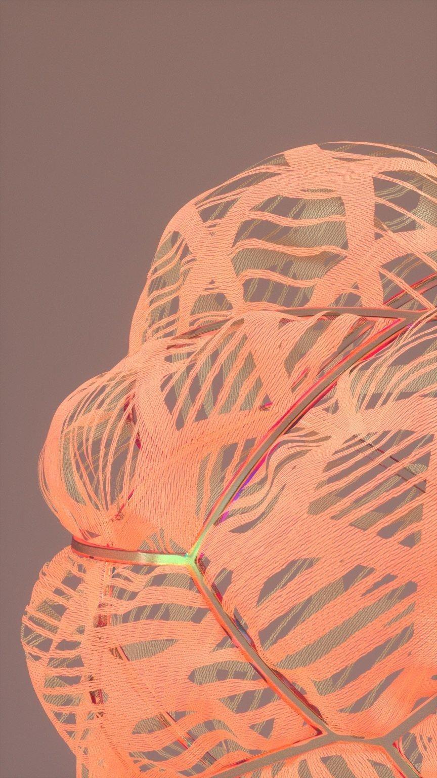 Orange Lace - image 1 - student project