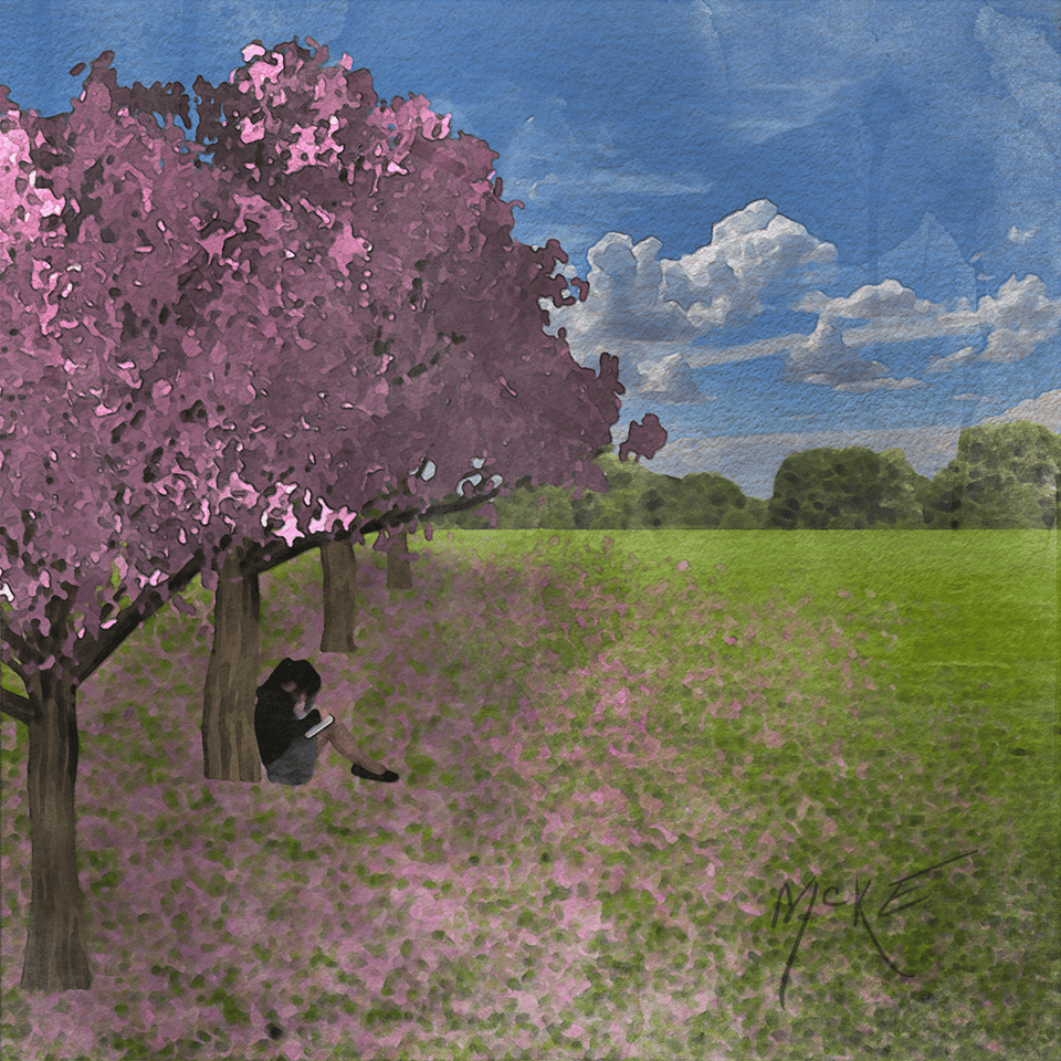Sakura Cherry Trees - image 1 - student project