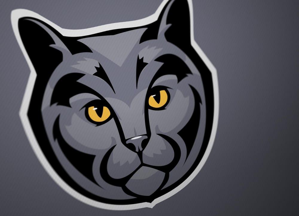 Sport Cat - image 2 - student project