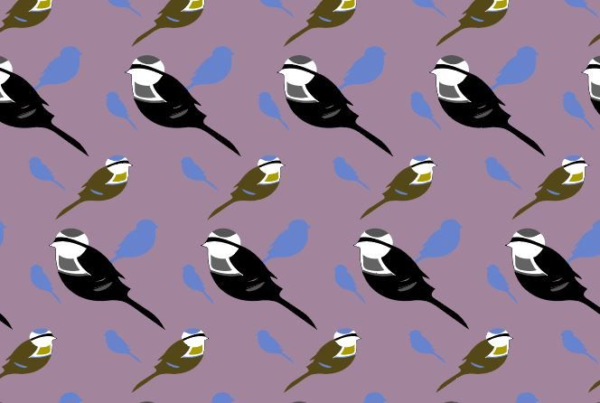 patterns with birds and flowers - image 1 - student project