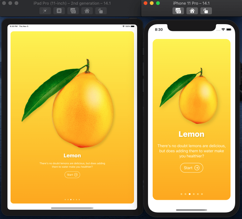 Fructus iOS Mobile App in SwuiftUI MasterClass - image 2 - student project