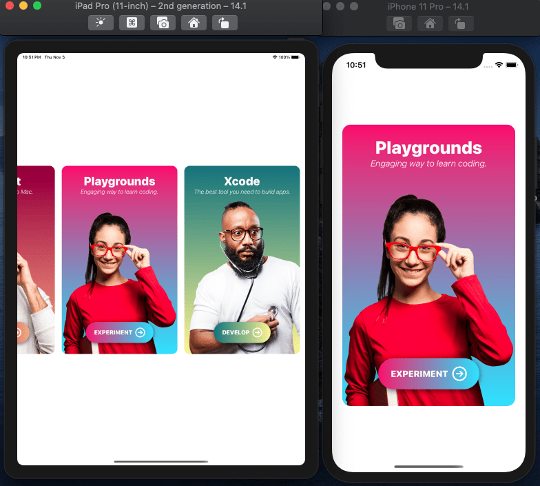 Learn by Doing: Create an awesome iOS card app with SwiftUI - image 3 - student project
