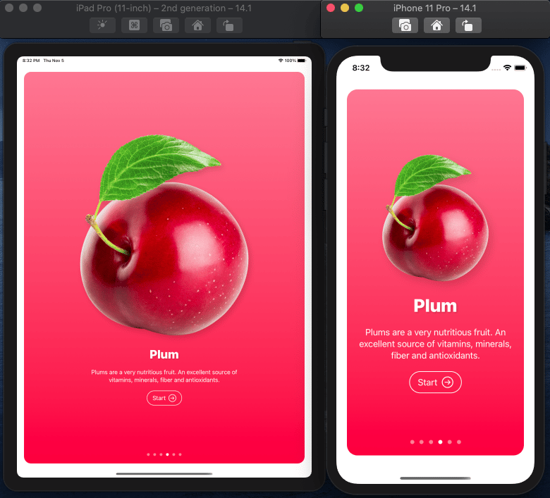 Fructus iOS Mobile App in SwuiftUI MasterClass - image 4 - student project