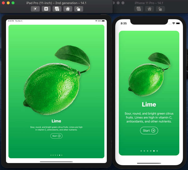 Fructus iOS Mobile App in SwuiftUI MasterClass - image 3 - student project