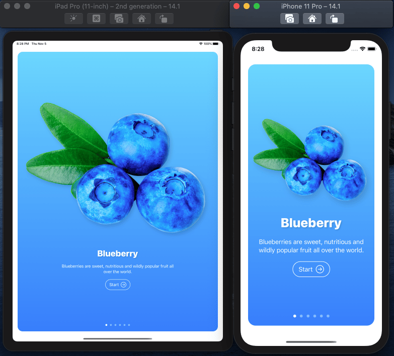 Fructus iOS Mobile App in SwuiftUI MasterClass - image 6 - student project