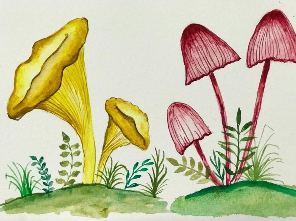 Cute little mashroom - image 4 - student project