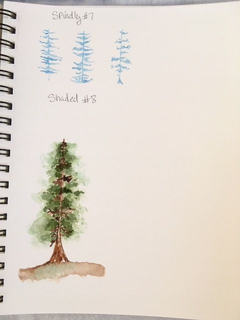Loose Pines - image 3 - student project