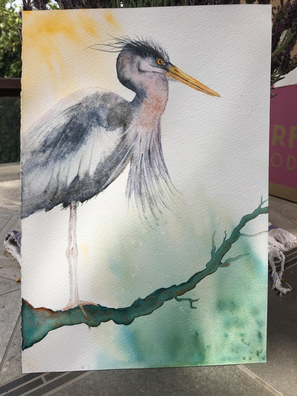 My angry heron - image 1 - student project
