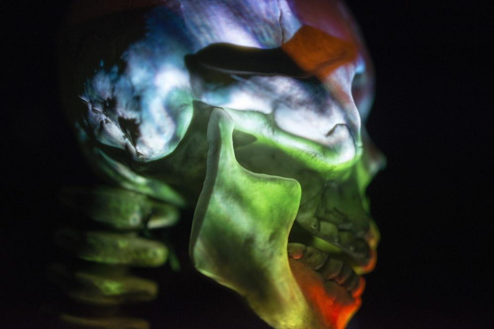 Skull and Projector - image 1 - student project