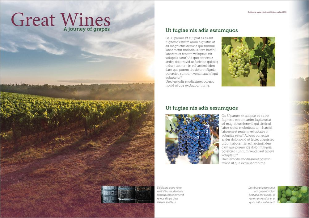 Great Wines - Magazine Spread - image 2 - student project
