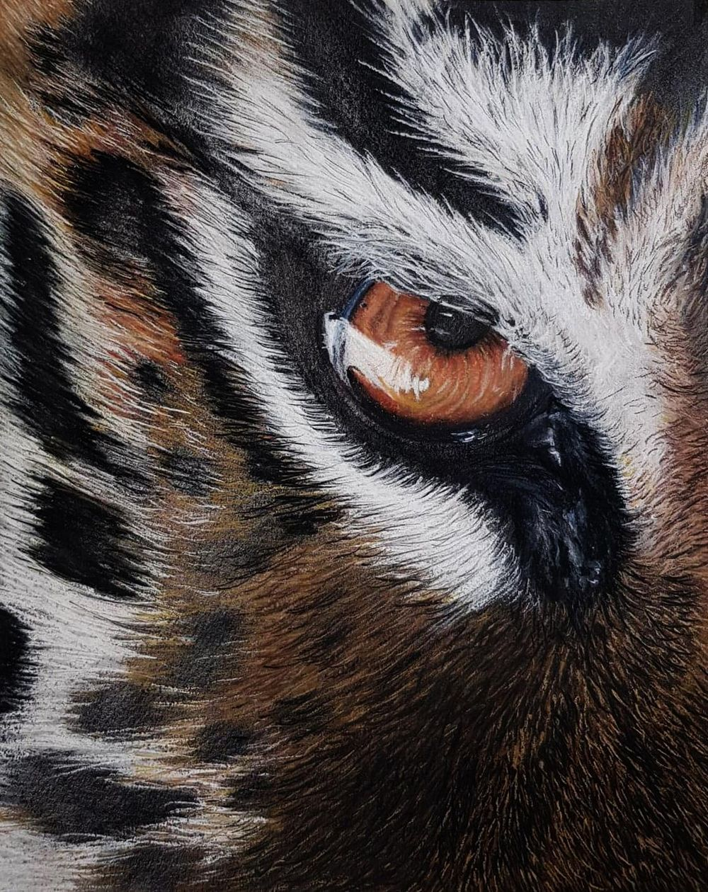 Tiger Eye - image 1 - student project