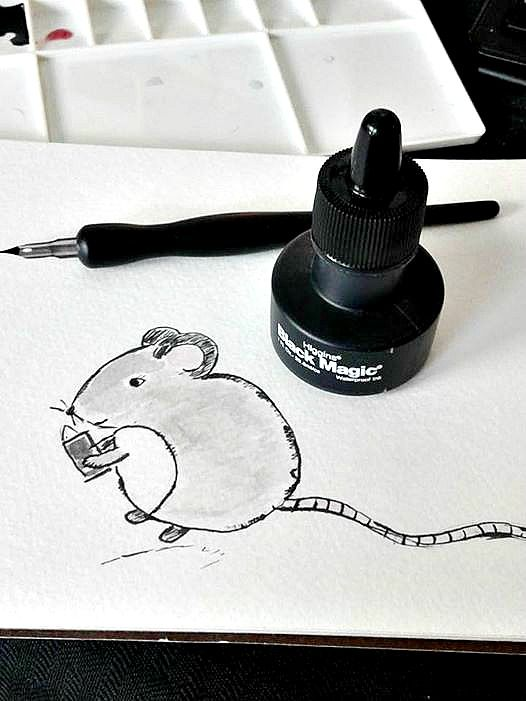 Mouse with a Magazine - image 1 - student project