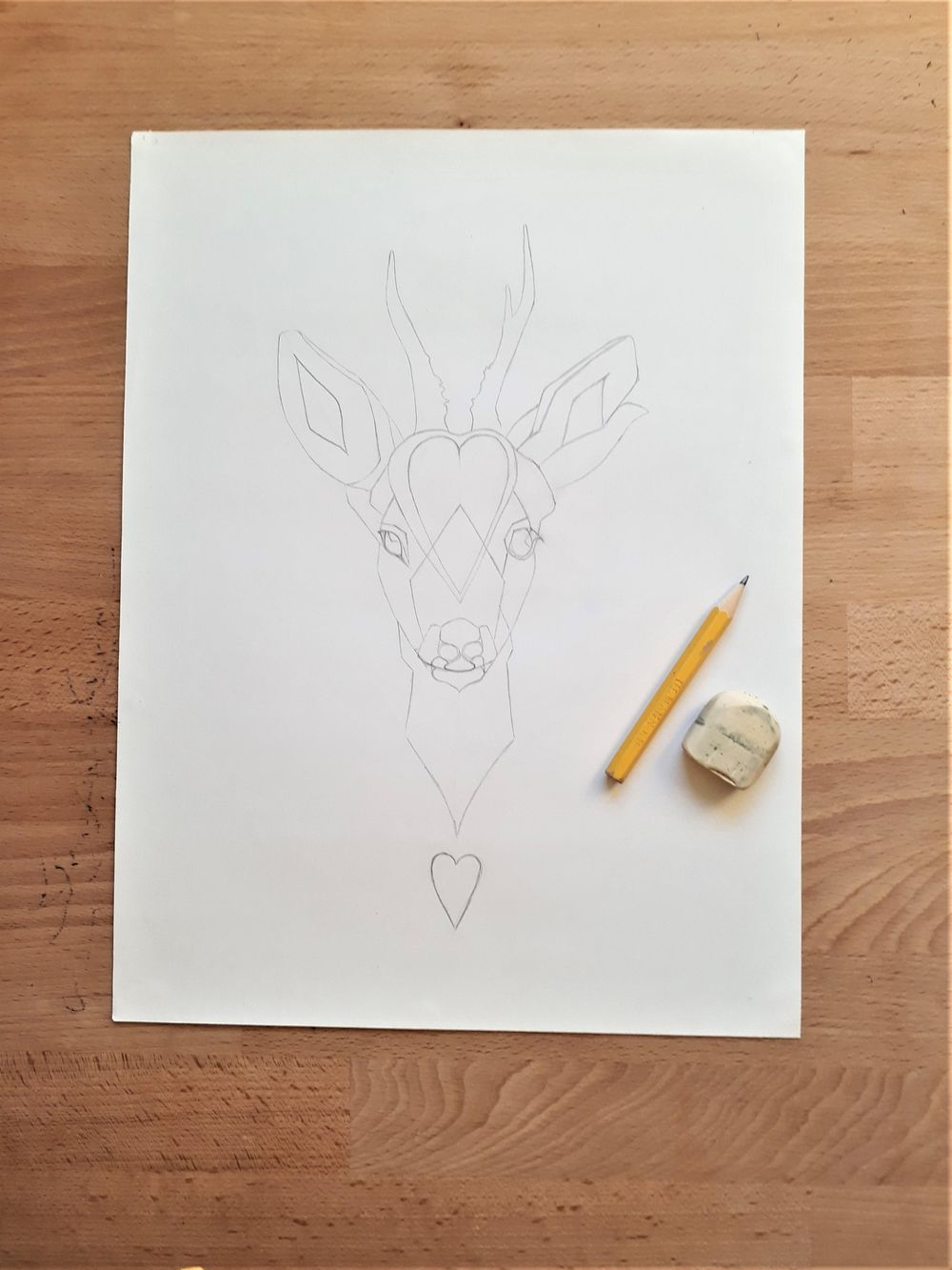 Roe Deer - image 4 - student project