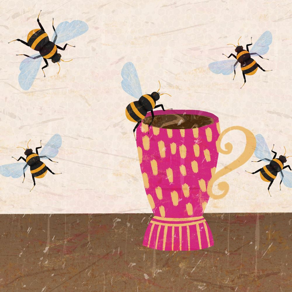 Insect Illustrations - image 7 - student project