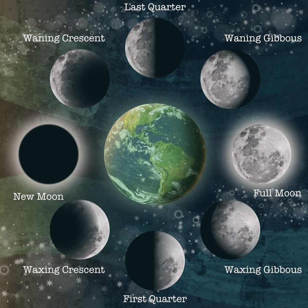 Moon phase illustration - image 1 - student project