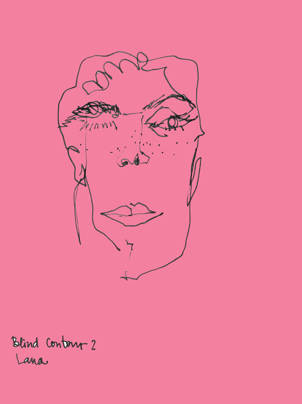 blind contour+simple hand drawing - image 2 - student project
