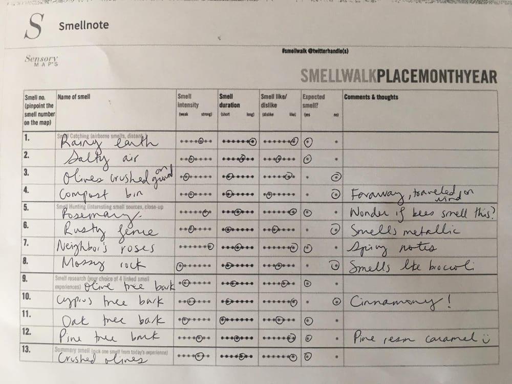& Smellfie: farm walk in Sonoma - image 1 - student project