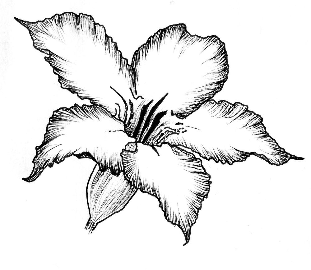 Ink flower - image 1 - student project