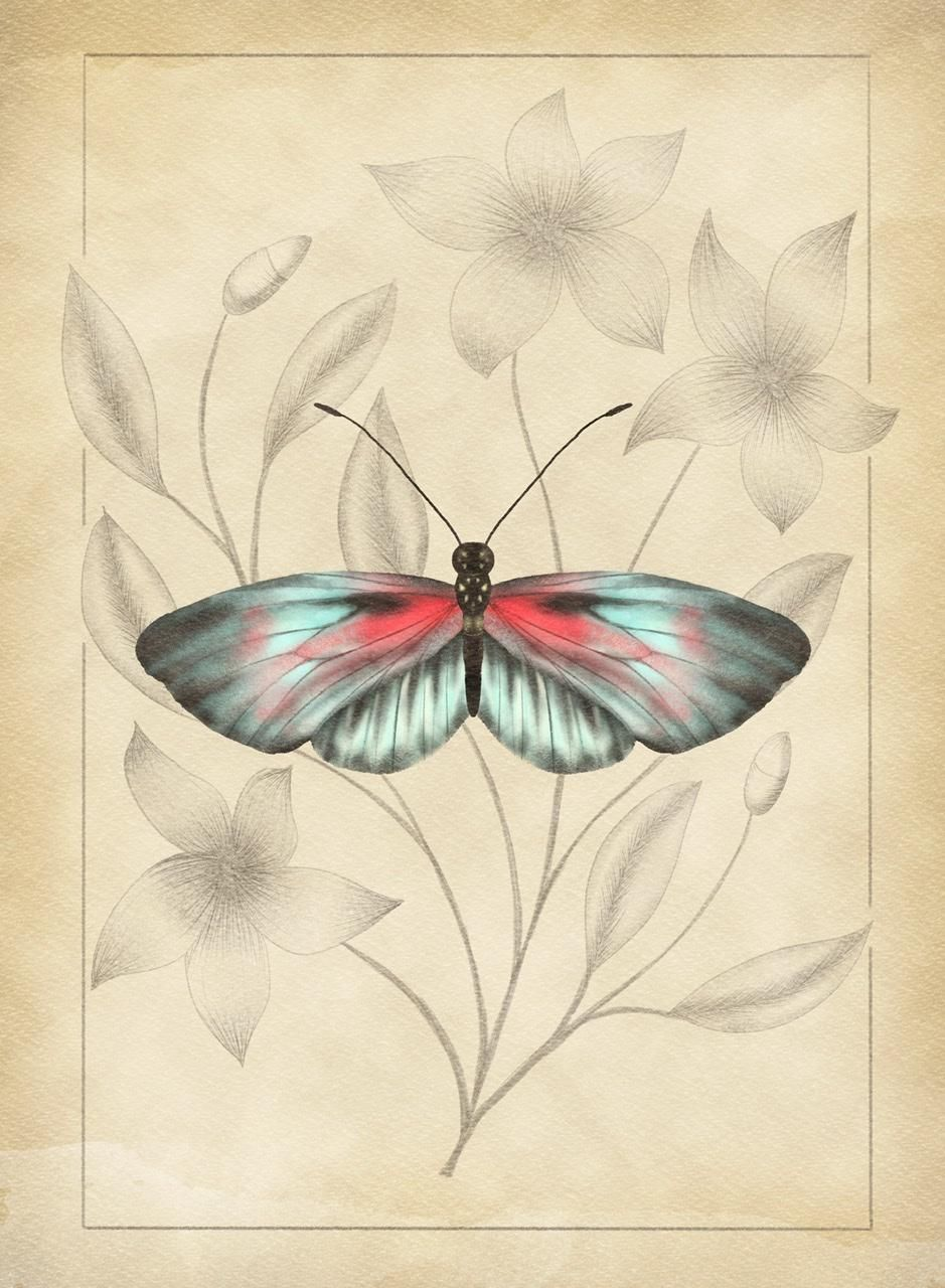 Vintage Style Butterfly Illustration - image 1 - student project