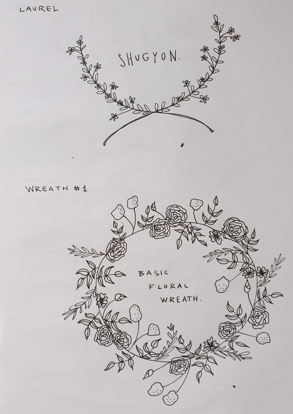 Botanical Line Drawing - image 3 - student project