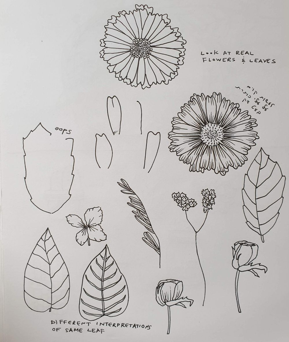 Botanical Line Drawing - image 5 - student project