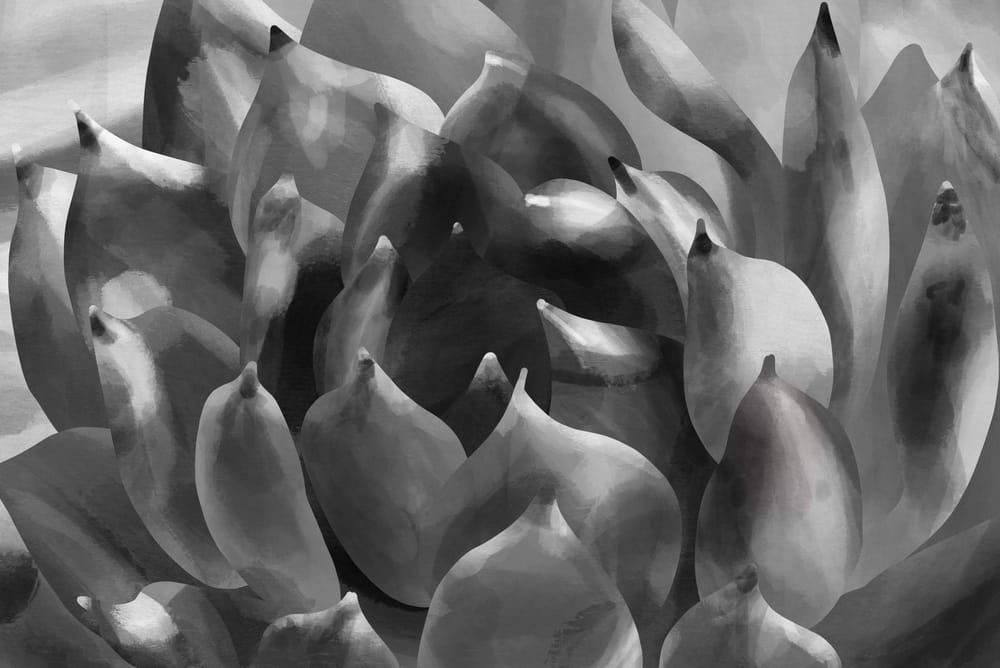 Succulent digital painting (procreate on iPad) - image 6 - student project