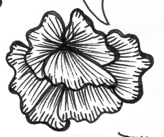 Ink flower - image 2 - student project