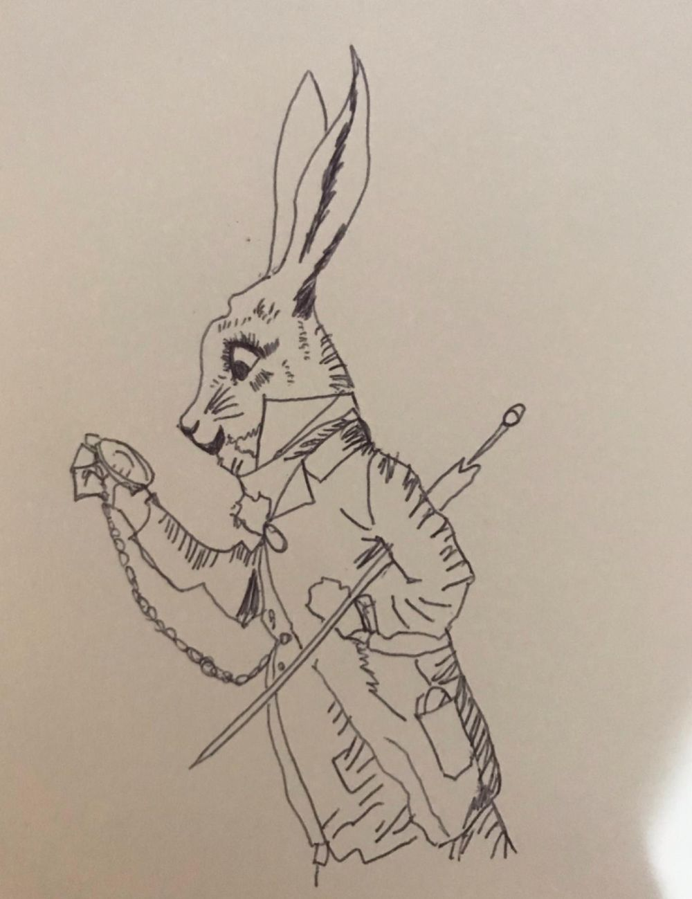 Upside down rabbit - image 1 - student project