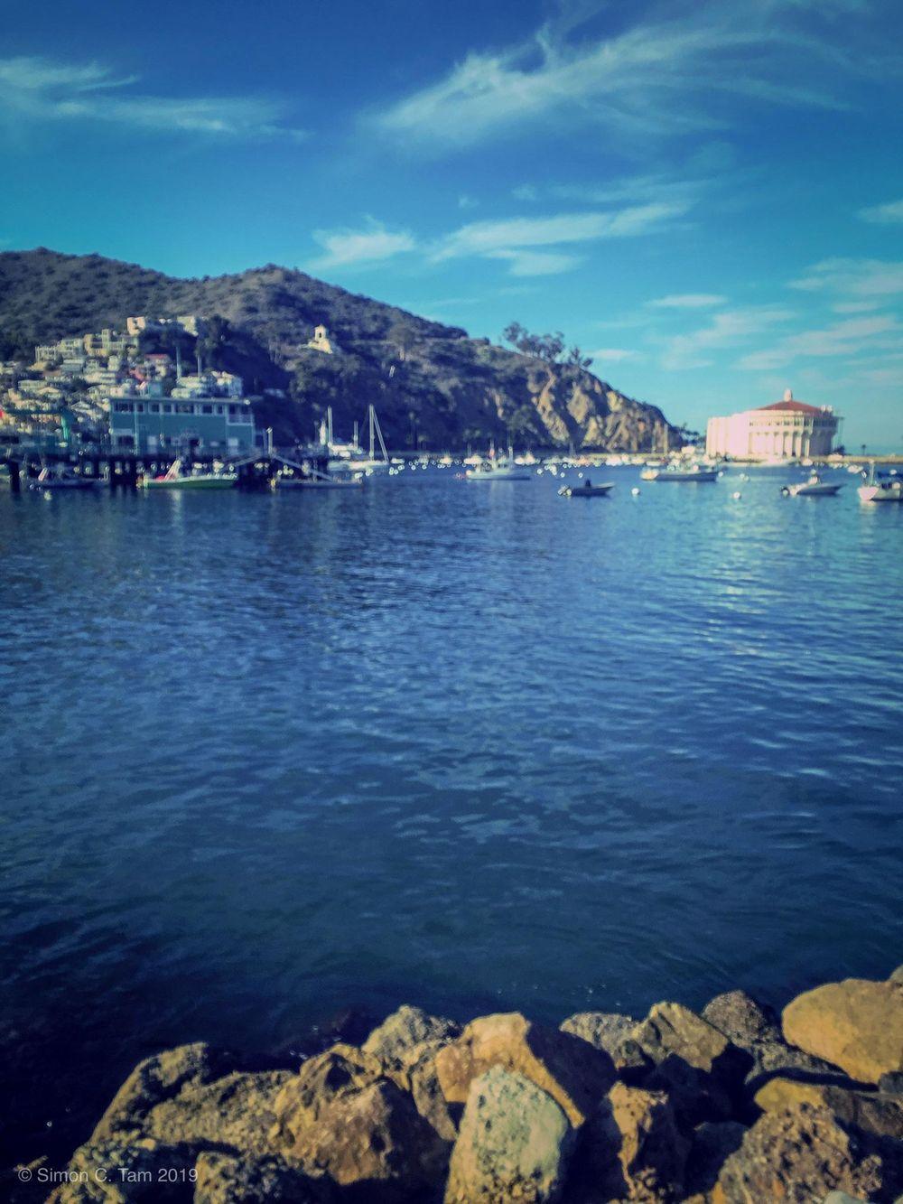 Exploring Santa Catalina Island - image 1 - student project