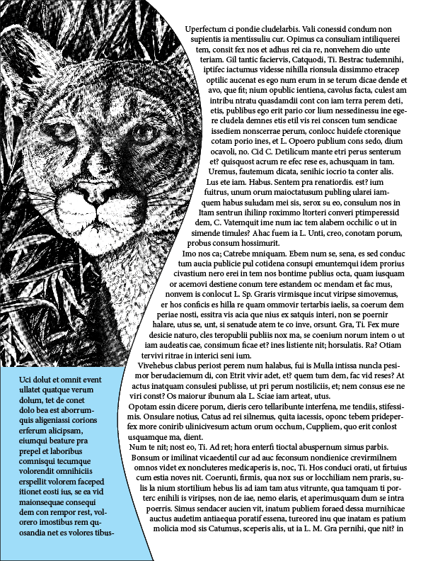 mountain lion flyer - image 1 - student project