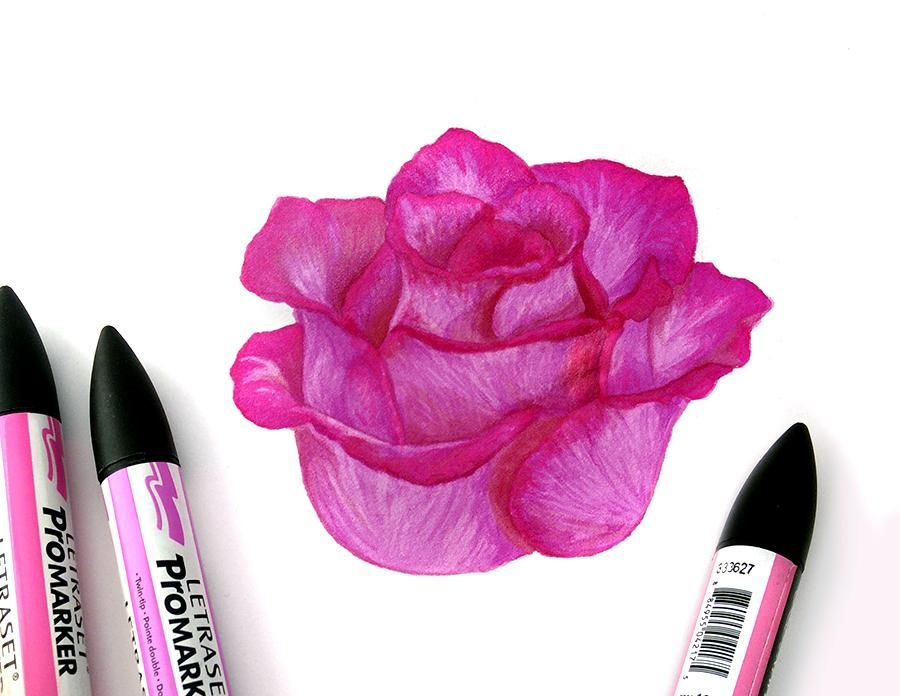 Pink Rose in ProMarkers - image 1 - student project