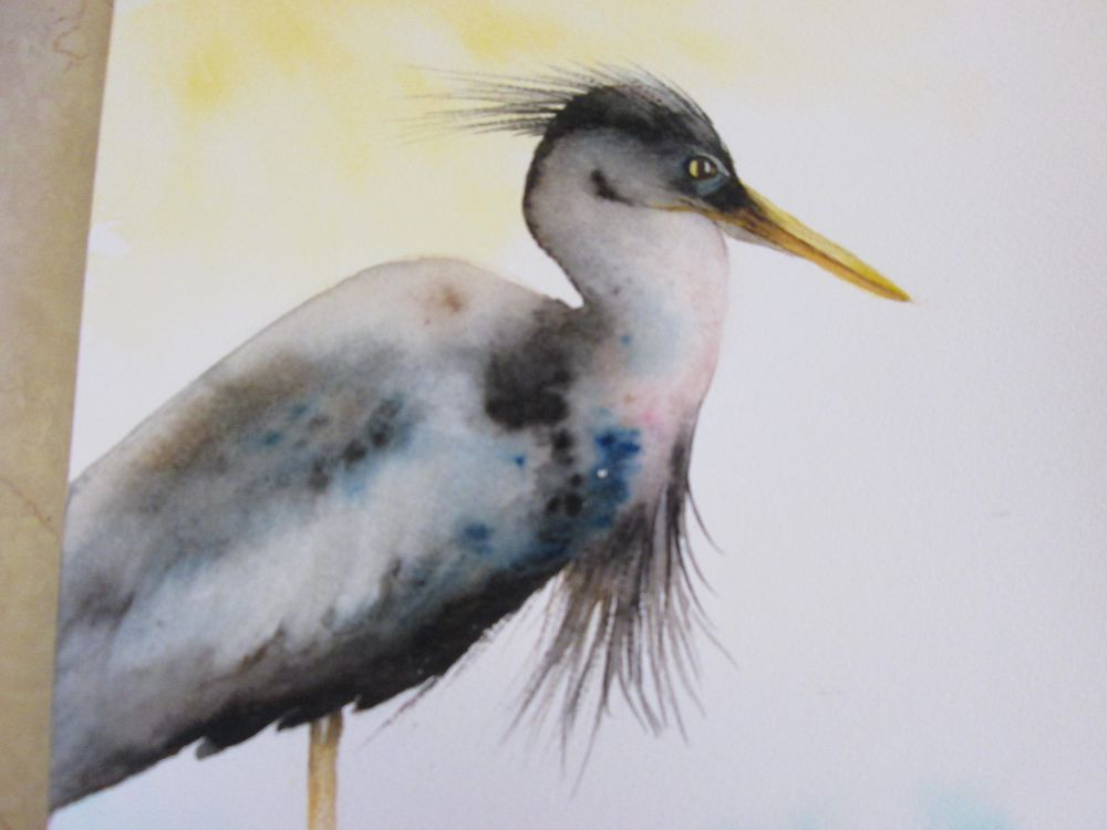 Heron - image 2 - student project
