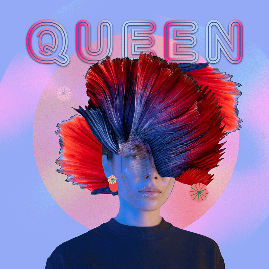 Queen - image 1 - student project