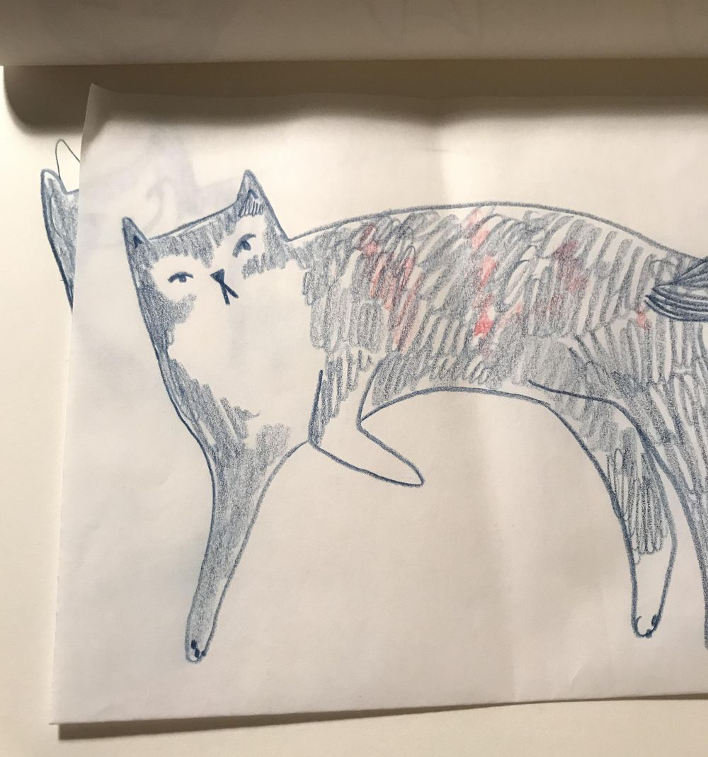 Lazy cat - image 2 - student project