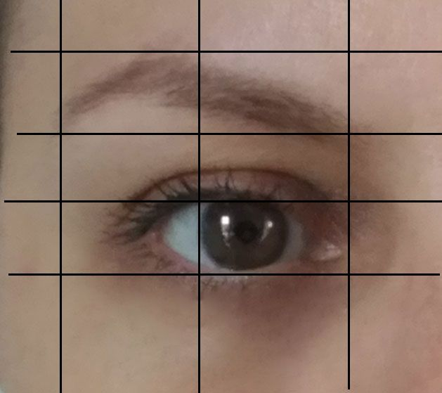 My Brows Through The Years - image 2 - student project