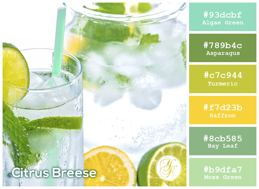 Citrus Breeze - image 1 - student project