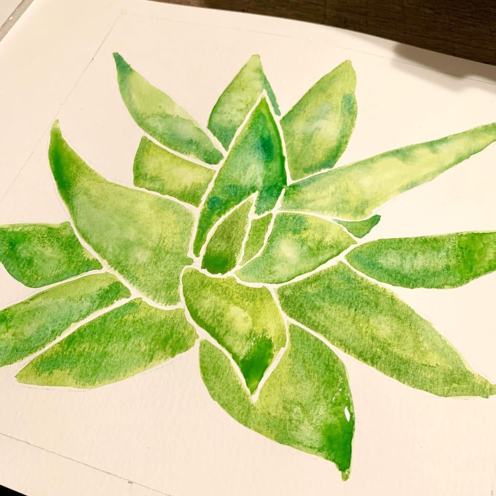 Aloe Vera - image 1 - student project
