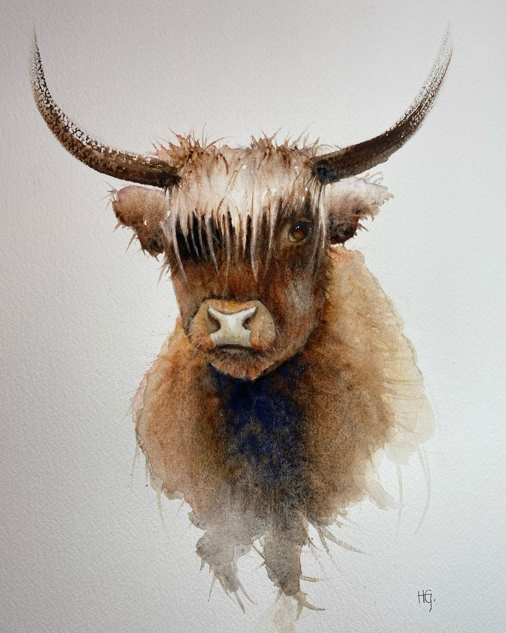 Highland cow - image 1 - student project