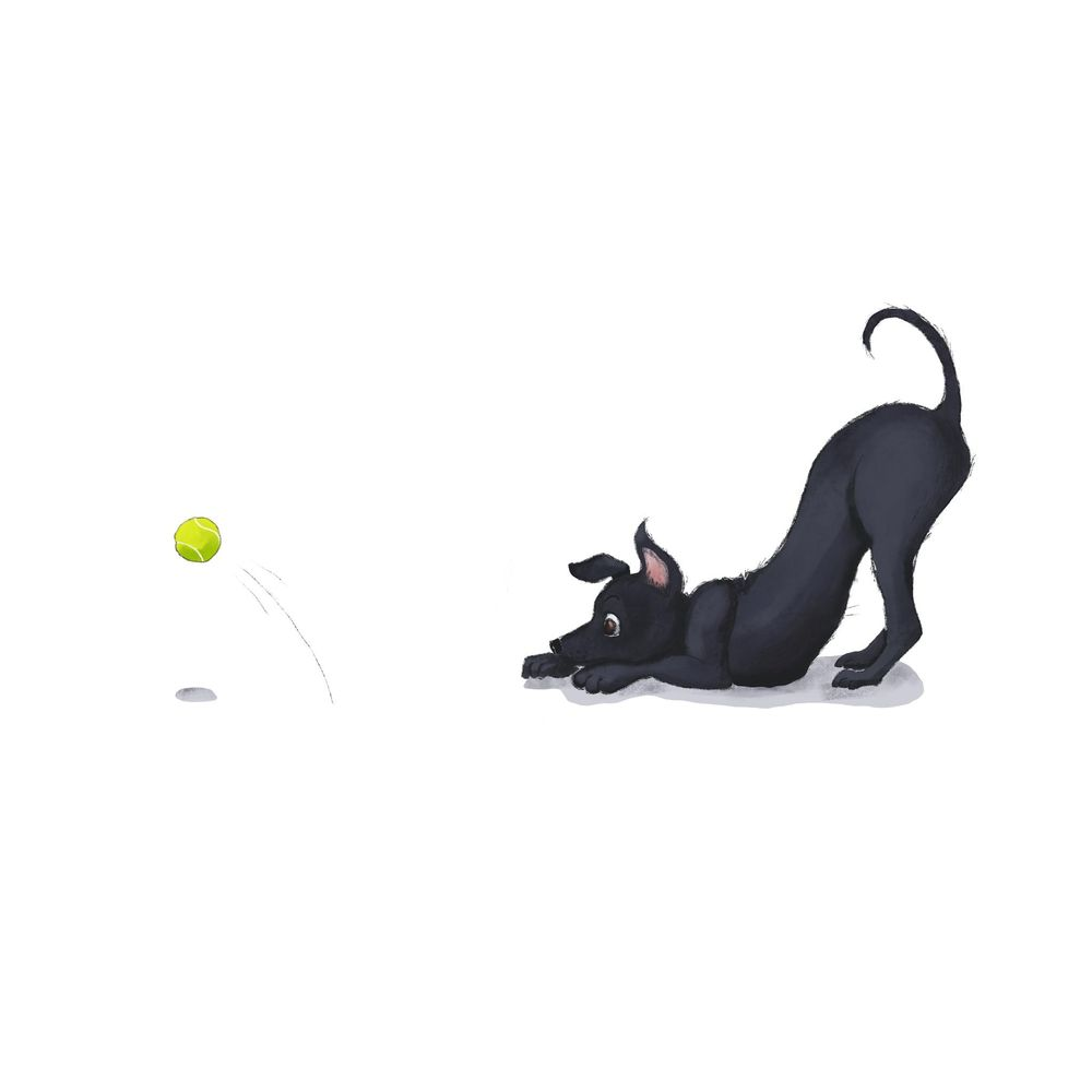 Playful Puppy - image 1 - student project