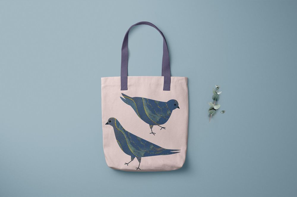 Marbled Pigeons - image 2 - student project
