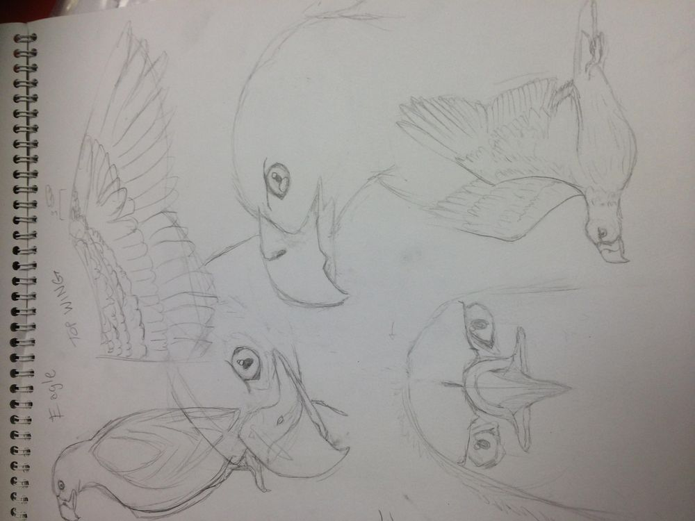 Variety of Animal Drawings - image 4 - student project